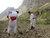Post demining impact of Khuram Sarbagh district of Samangan province. @UNMAS